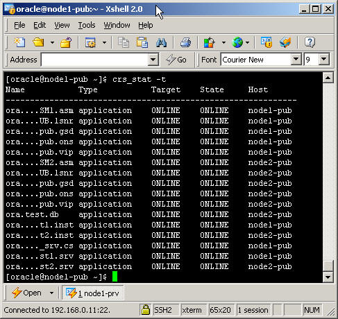 oracle how to delete database